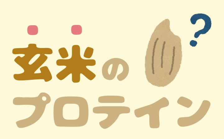 玄米プロテインの特徴
