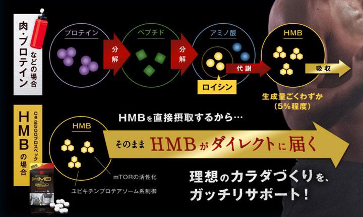 HMBのダイレクト効果の解説図